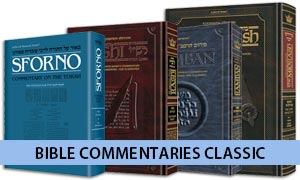 Bible Commentaries Classic