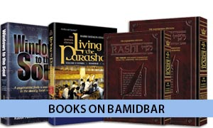 Books on Bamidbar