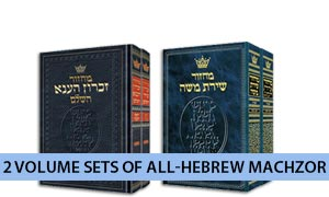 2 Volume Sets of All-Hebrew Machzor