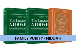 Niddah/Purity
