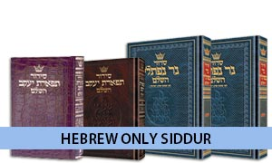Hebrew Only Siddur