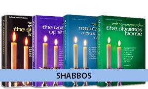 Shabbos and Festivals