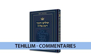 Tehillim Hebrew Only - Children's and Youth
