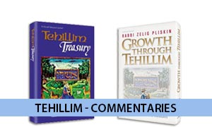 Tehillim - Commentaries